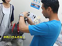 Dscf4945_640x480