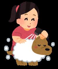 Wash_pet_dog